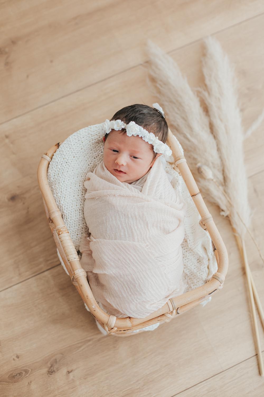 Newborn Bella-38